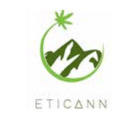 Eticaan Logo of Mountains and Shooting Star circling that is a cannabis leaf all in green; one of Valens partners